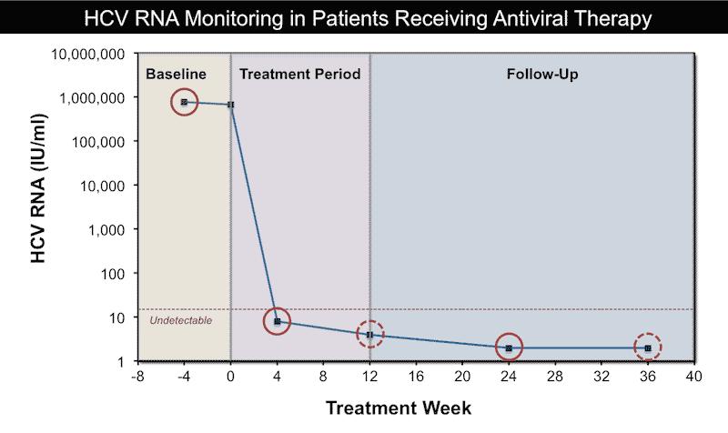 Мониторинг во время и после лечения ВГС